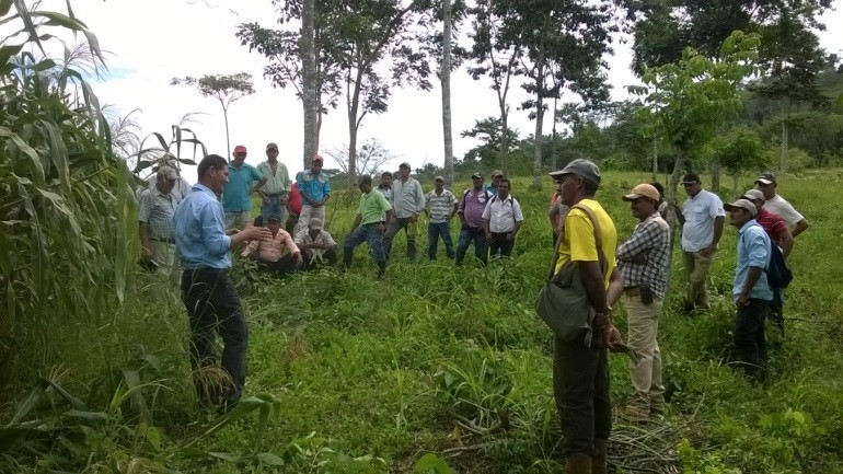 Educating Nicaragua's Farm Families
