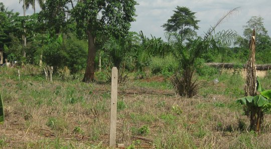 Stakes and Stakeholders Established for New Training Center in Ghana
