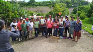 El Juste Farmers See the Benefits of QPM Seed and New Farming Methods